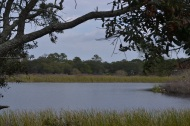 Gator Lake at St. Andrews Aquatic Preserve